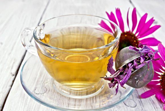 Natural Cold Remedies: Echinacea and Lemon Juice